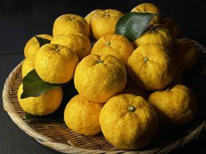 yuzu_citron_before_squ